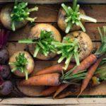 Финальная уборка. Как подготовить к хранению различные овощи