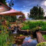 Лунный календарь садовода иогородника с 29 мая по 16 июня