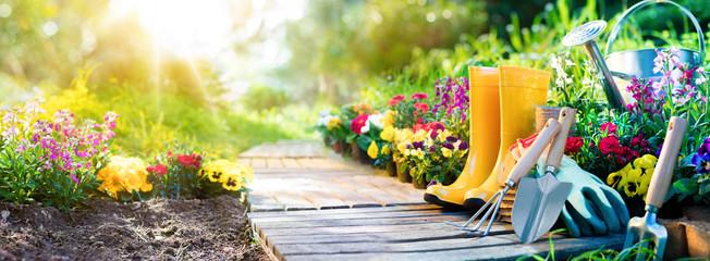 10 советов начинающим неопытным садоводам-огородникам