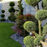 Как с пользой использовать теневые участки в саду