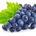 Виноград: правильная посадка и уход