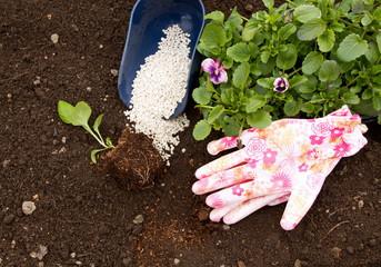 Летние подкормки или каждому овощу свое удобрение фото