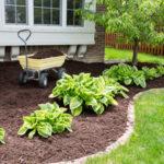 Популярные материалы для мульчирования почвы