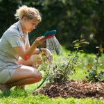 Как правильно подготовить почву к весенней посадке