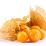 Физалис овощной съедобный