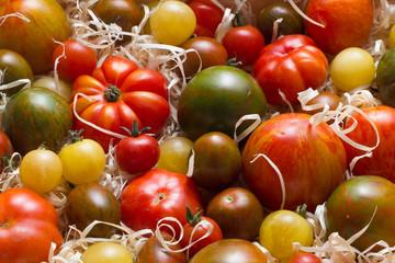 Мульчирование помидор опилками
