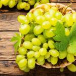 Секреты выращивания винограда в саду