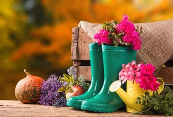 Подготовка сада к предстоящей зиме – заботимся о следующем сезоне заранее