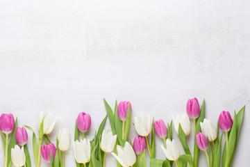 Тюльпаны. Самые эффективные способы выращивания цветов. Рекомендации