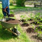 Посадка картофеля обычной лопатой — это просто, быстро, недорого