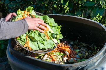 Как из мусора и листьев быстро получить компост