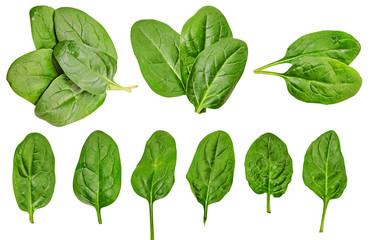 Домашний огород: выращиваем зелень на подоконнике