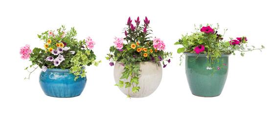 Как пересадить цветок из одного горшка в другой?