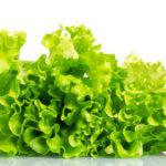 выращиваЕМ салат на подоконнике