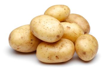 Как размножается картофель
