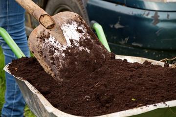 Топ-11 натуральных удобрений для комнатных и садовых растений