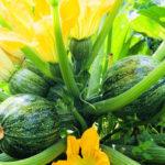 Выращиваем кабачки на высокой грядке