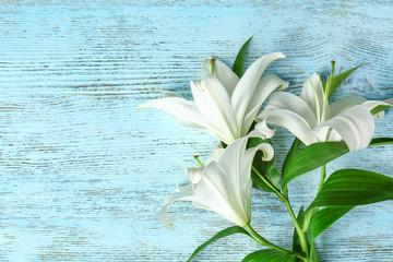 Лилии. Когда сажать и пересаживать растение? Классификация цветка
