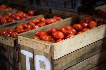 Где хранить помидоры