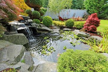 Флора, фауна и аксессуары для пруда