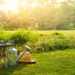 Золотые правила для планирования сада