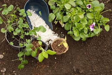 Правильный выбор удобрения - залог получения отличного урожая