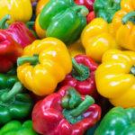 Ошибки садоводов при выращивании перца