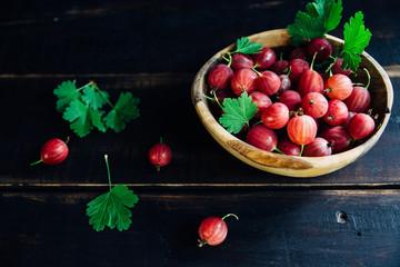 Крыжовник «командор»: особенности выращивания высокоурожайного сорта