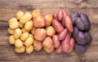 Картофель и его сорта для Нечерноземной зоны