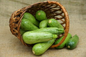 Секреты получения большого урожая кабачков