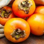 Как вырастить хурму в домашних условиях из косточки: тонкости агротехники