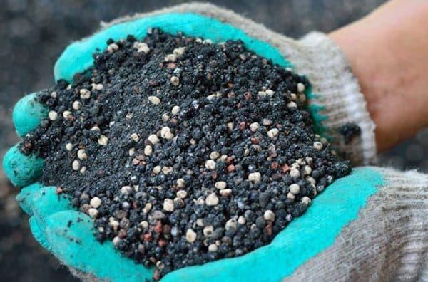 Виды минеральных и органических удобрений